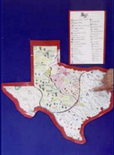Texas Map Puzzles and Study Cards